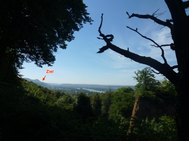 Das Ziel im Auge #Bonn-Oberkassel